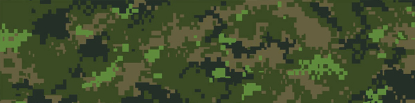 camouflage DCamC
